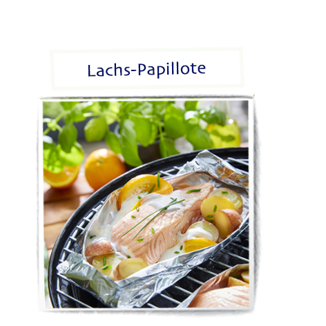 rezept 2 bio lach filet internet